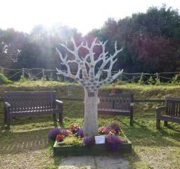 Memorial Tree in Brocks Hill Country Park